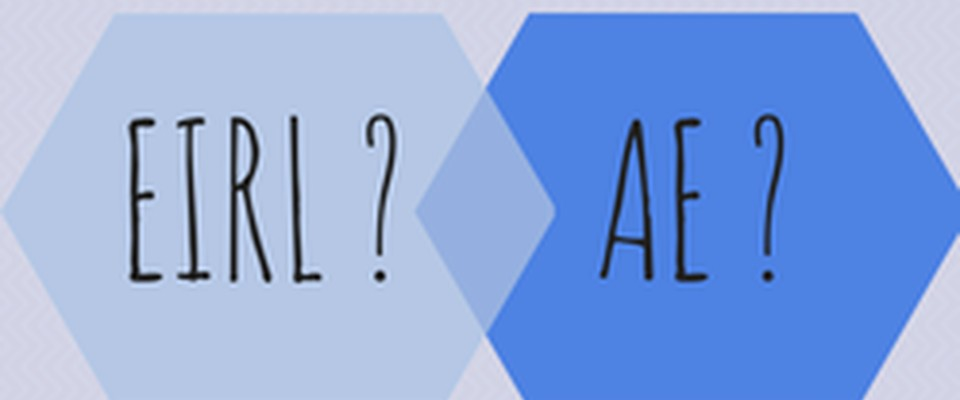 Quelles différences entre une EIRL et une auto-entreprise ?
